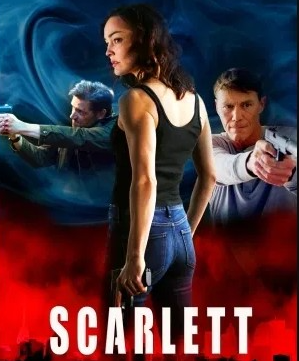 A college student must draw upon all the skills her spy-father taught her to protect herself and save her father from weapons dealers. Genre: Action IMDB Rating Live: https://www.imdb.com/title/tt12590438/ IMDB Rating: 6.7/10 From 94 Users Resolution: 1920x1080 Directed by: John Lyde Starring: Melanie Stone , Brian Krause , Musa Aden Release Name: 1080pamznweb-dlddp51h264-evo Release Date: 1 December 2020 (USA) Audio: English   AC3   384 kb/s Runtime: 1 h 43 min Subtitles: English